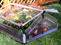 Poly-Tex Double Cold Frame